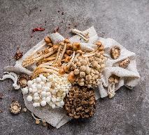Grzyby lecznicze - maitake, reishi i shitake