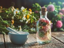 Syrop z kwiatów czerwonej koniczyny - przepis na syrop koniczynowy