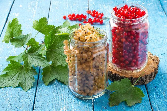 Porzeczki we własnym soku na zimę: jak zamknąć smak lata w słoiku? [przepis]